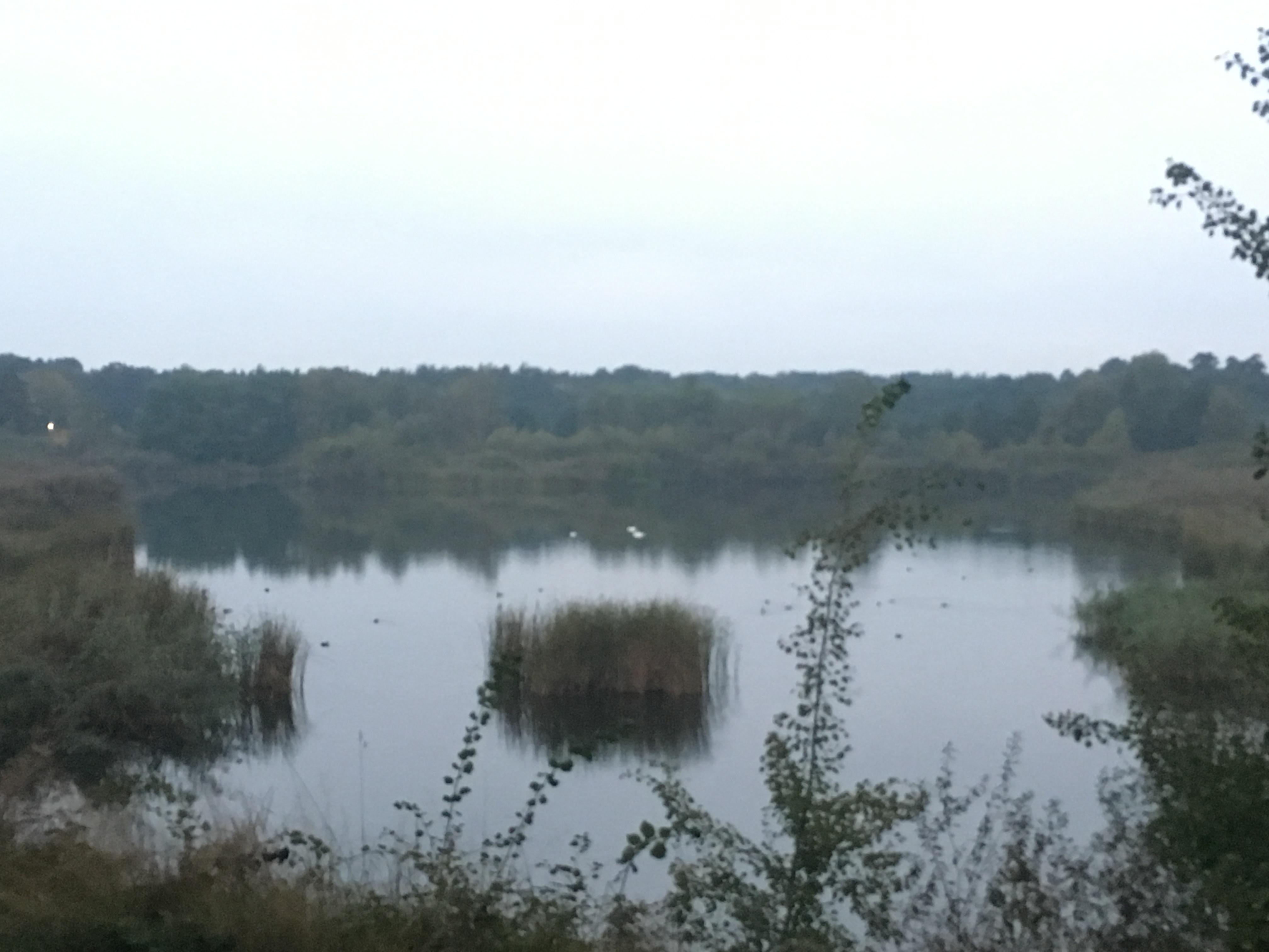 idyllische Oase - See im grünen gleich neben der Haupstrasse.